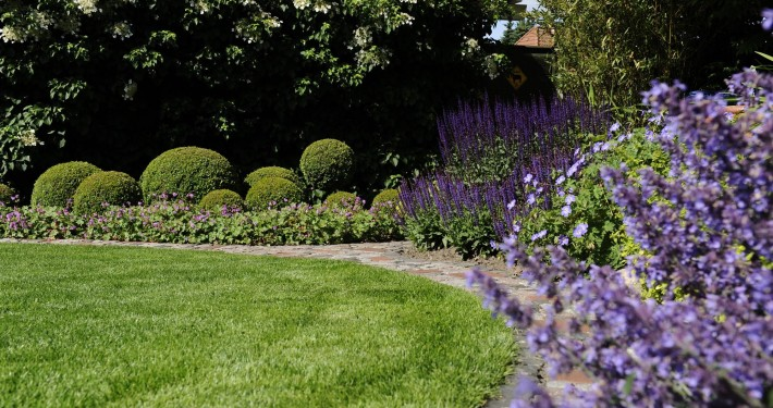 Kreisunder Rasen in einem kleinen Reihenhausgarten