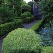 kleine Hinterhöfe gestalten mit immergrünen Hecken