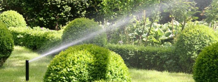 Automatische Bewässerung heißt zeitsparend beregnen mit einer Gartenberegnung