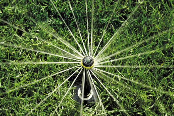 Rotary-Düsen für Beete und Stauden mit mittlerer Wurfweite von Rainbird