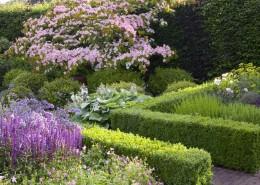 Gerade Hecken geben dem Garten Struktur