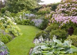 Geschwungener Rasenweg führt wie ein Hohlweg durch Beete und Garten