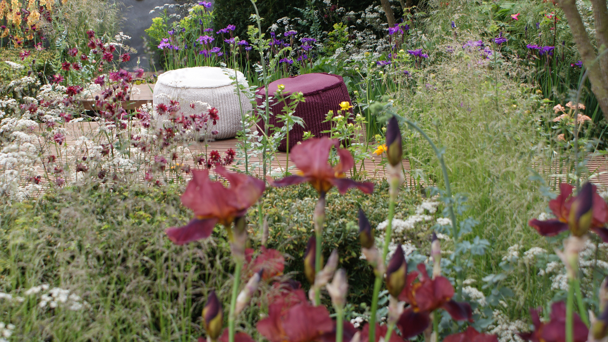 Pflanzen mit motto zinsser gartengestaltung for Gartengestaltung celle