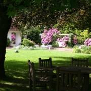 Sitzgruppe von Garpa unter altem Liriodendron - Tulpenbaum