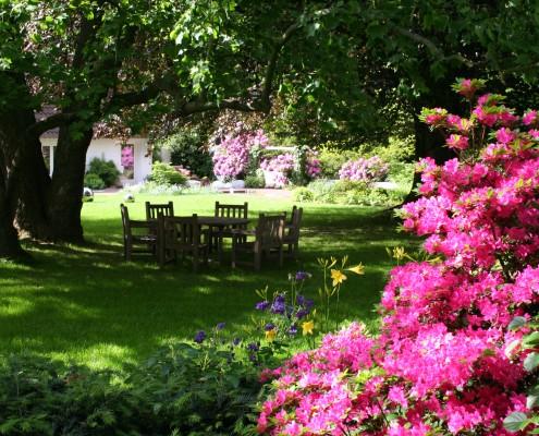 feng-shui-im-garten-schattengarten-mit-rhododendron-tulpenbaum (11)