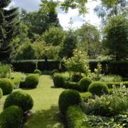 Buchsbaum im Bauerngarten, leider nicht mehr empfehlenswert