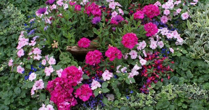 Grabbepflanzung pflegeleicht