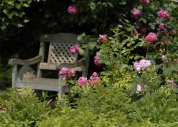 alte Rosen und schöne Möbel