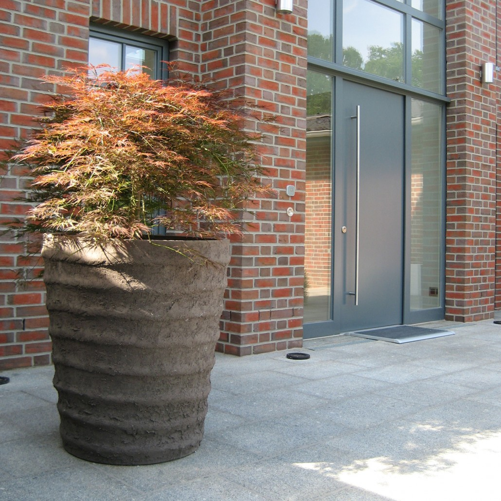 Solitäre Im Topf Zinsser Gartengestaltung Schwimmteiche Und