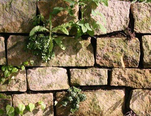 Naturstein-Trockenmauer