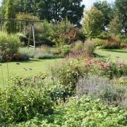 Herbstfärbung im Garten mit Stauden und Wasserspiel – Edelstahl-Wasserschale