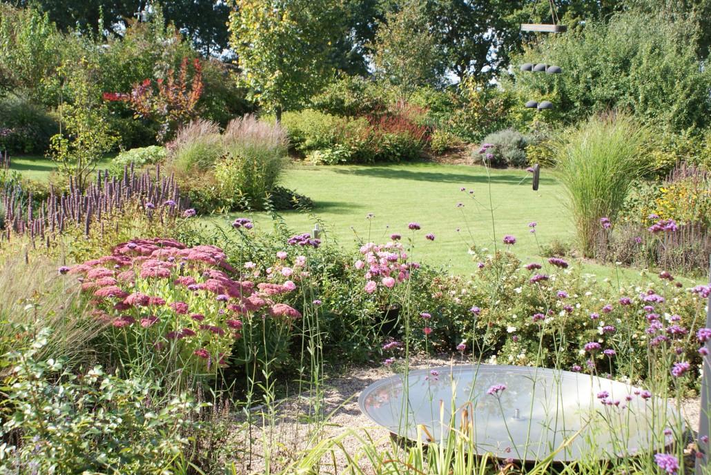 Herbstliche Blute Und Laubfarbung Zinsser Gartengestaltung