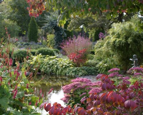 Herbstfärbung und späte Blüte