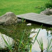 Holzsteg über dem Wasser schwebend