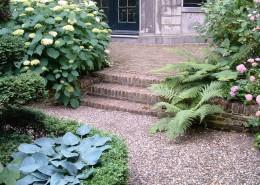 Kiesfläche und Klinker mit Hortensien , Buchsbaum, Farn und funkien