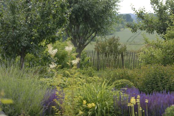 Natur im garten zinsser gartengestaltung schwimmteiche for Naturgarten gestalten