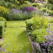 Kräutergarten mit Buchsbaumhecken