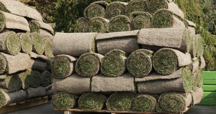 Rollrasen ist Rasen auf Rollen