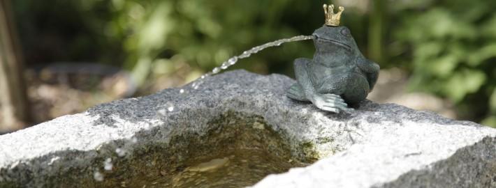 Granit ein wunderschönes langlebiges Baumaterial, hier Froschkönig als Wasserspeier