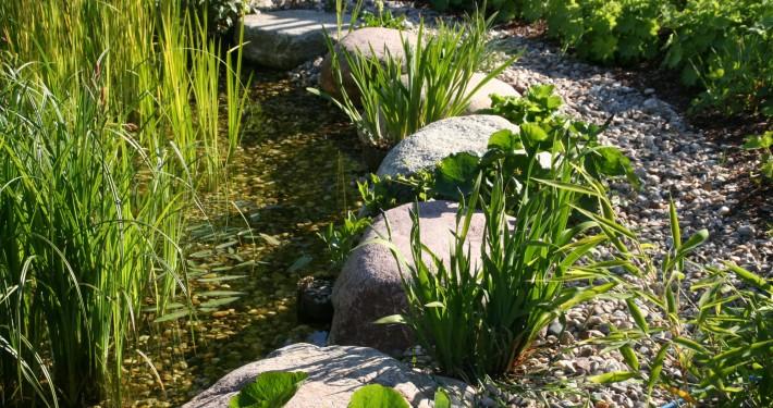 große Findlinge als Trittsteine durch den Garten-Teich