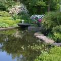 Flache Trittsteine im Gartenteich