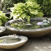 Flache Steinschale als Vogelbad