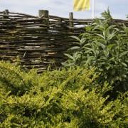 natürlicher Sichtschutz mit Weidengeflecht