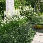 schlichte und pflegeleichte Bepflanzung