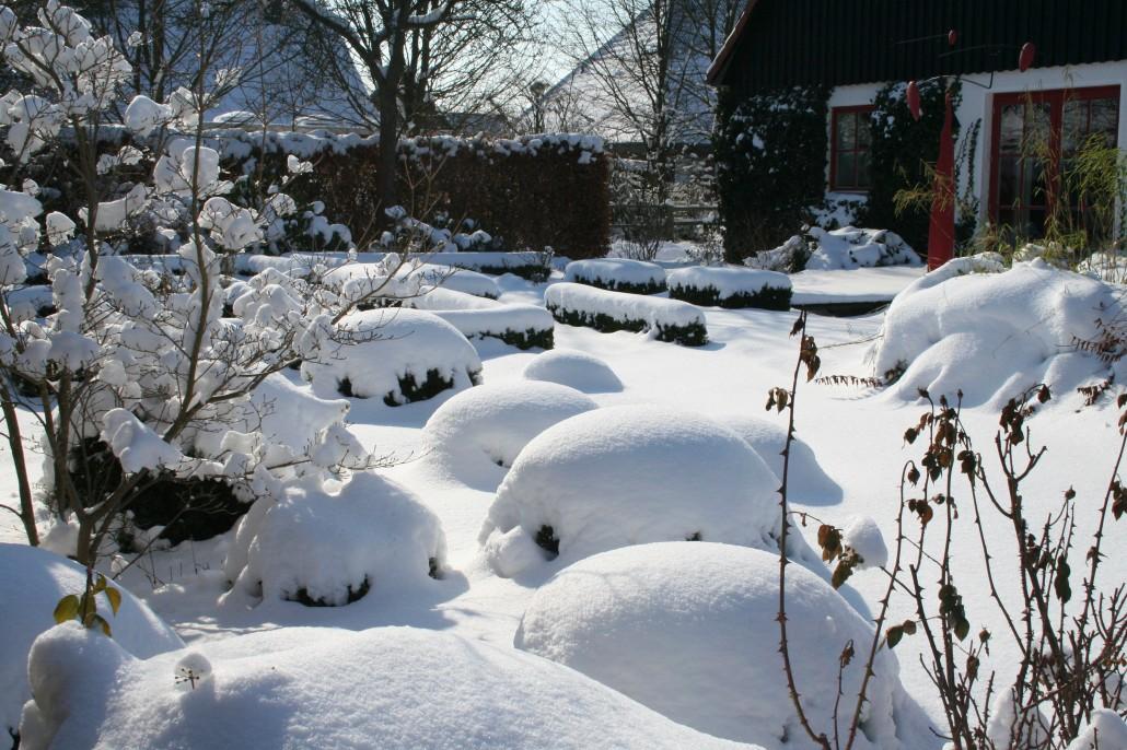 Gärten Im Winter ? Zinsser Gartengestaltung, Schwimmteiche Und ... Gartengestaltung Im Winter